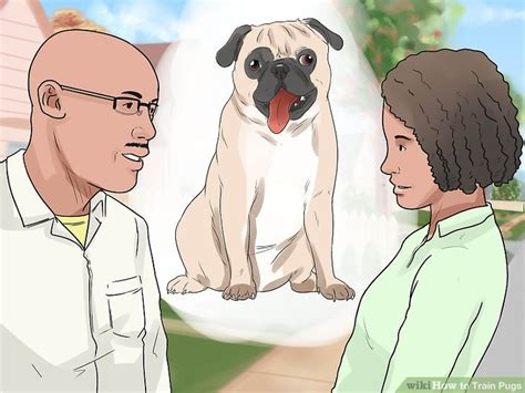 pug yelling at owner how to pugs with pictures wikihow