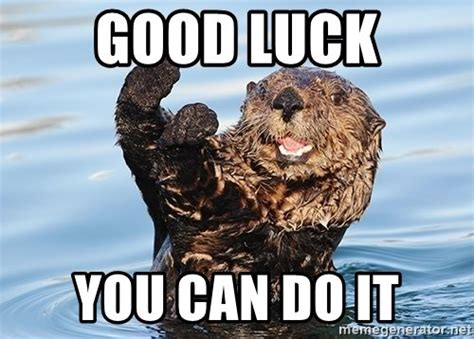Good Luck On Finals Meme - 20 best you can do it memes that are 100 encouraging