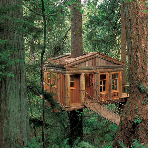 really cool tree houses daily good thing tree house love