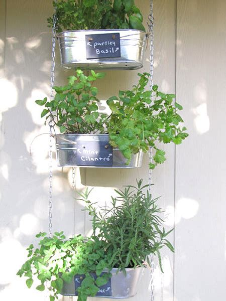 Diy Hanging Herb Garden | silver mirror metallic salad wall indoor kitchen herb