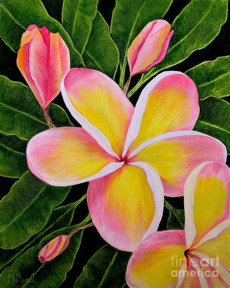 plumeria painting rainbow plumeria painting by mary deal