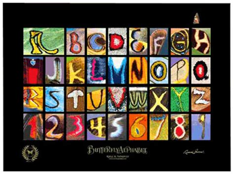 Poster Typografi Inspiratif If You Never Try You Ll Never wedding flashback diy alphabet photography