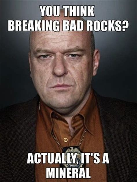Bad Bitches Meme - 17 best images about breaking bad bitch on pinterest