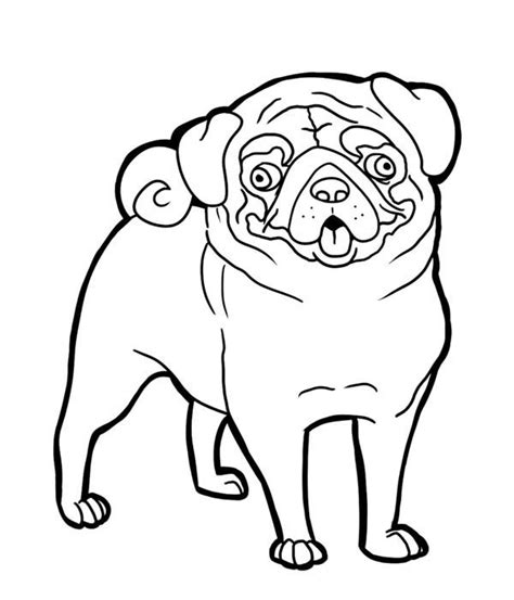 coloring pages of pug puppies pug pug funny face coloring page art pinterest