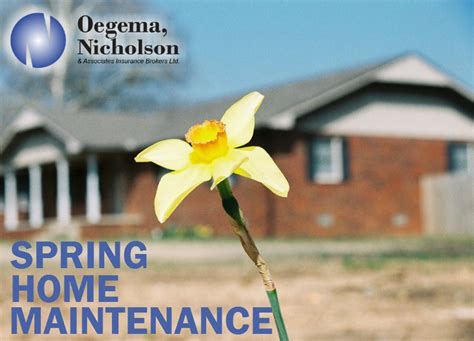 spring home tips spring home maintenance tips