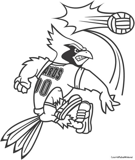 louisville basketball coloring pages university of louisville coloring pages coloring pages