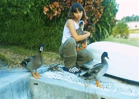 ducks in backyard 100 best backyard ducks treat your ducks hgtv best