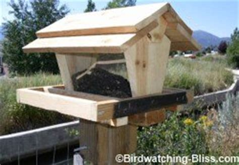 free bird feeder plans for all types of feeders