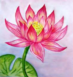 Lotus Flower Drawing 35 Beautiful Flower Drawings And Realistic Color Pencil