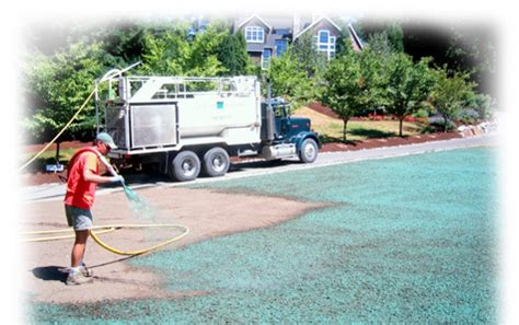 hydroseeding in seattle and bellevue grassmaster