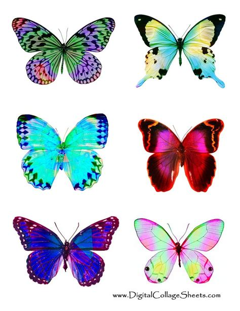 printable images butterflies butterfly colors make me smile mariposas pinterest