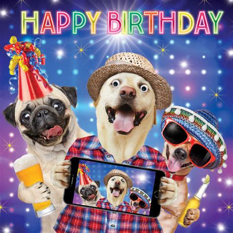 imagenes de happy birthday con perros pug dog friends birthday selfie funny birthday card 3d