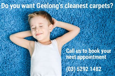 cheap rug cleaning budget carpet cleaning geelong carpet nrtradiant