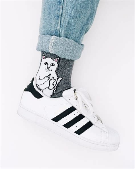 diy socks for cats best 25 sock cat ideas on diy dolls from