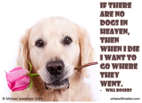 dogs in heaven quotes about pet loss
