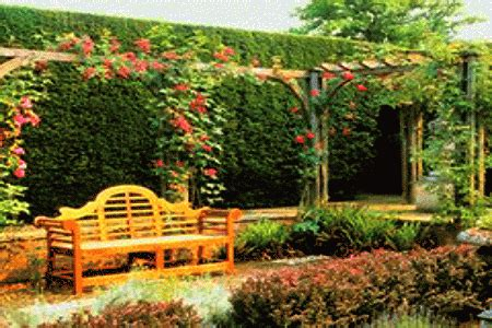 Walled Garden Nursery Cover Up Unsightly Backyard Walls With Vines Decor And