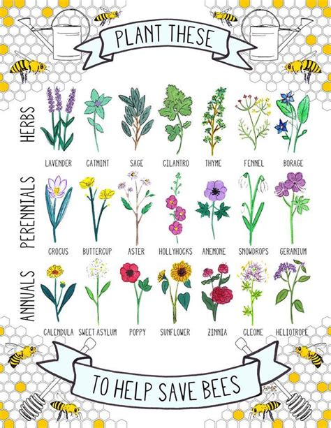 friendly plants for the bees