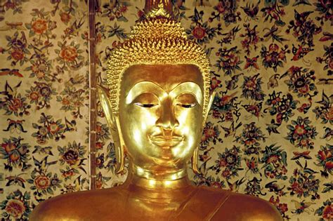 Sanyas Dharma Mastering The And Science Of Discipleship introduction to basic beliefs and tenets of buddhism