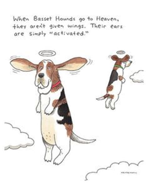 pets in heaven gift for owners 1000 ideas about basset hound on bassett hound picture of puppies and hound