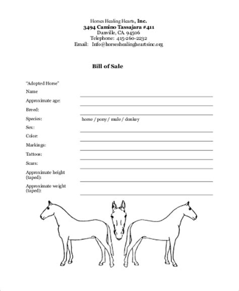 horse bill of sale sles 8 free documents in word pdf