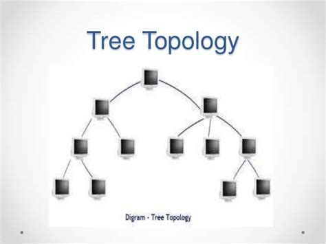 Computer Set Ups by Network Topology Ppt