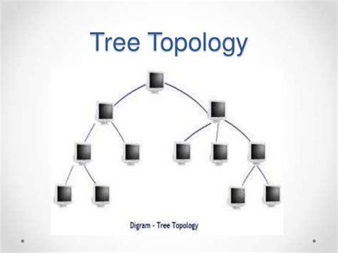 tree topology diagram network topology ppt