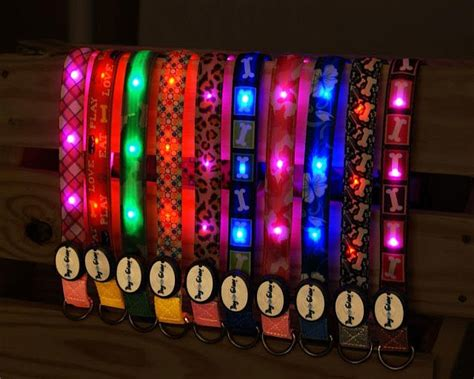 light up dog harness 12 things you must know before traveling with dogs rvc