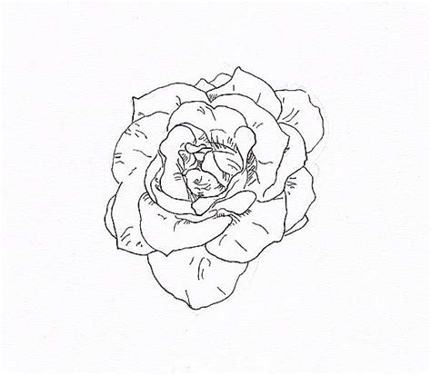 pen tattoo tutorial draw a rose with fiber tip pen