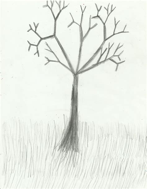 sketched tree tree sketch by extreme810 on deviantart