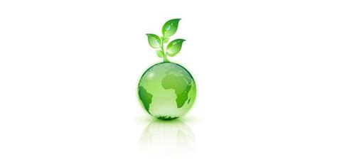Green Mba California by Allison Lai On Sustainable Business Leadership And