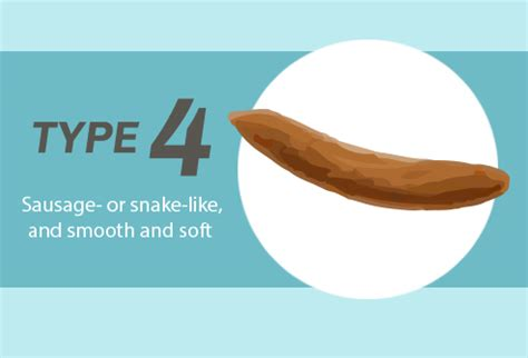 Type 4 Stool by Slideshow What Its Shape Size And Smell Say About