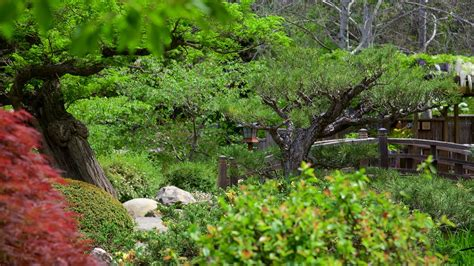 Hakone Gardens by Hakone Gardens In Saratoga California Expedia