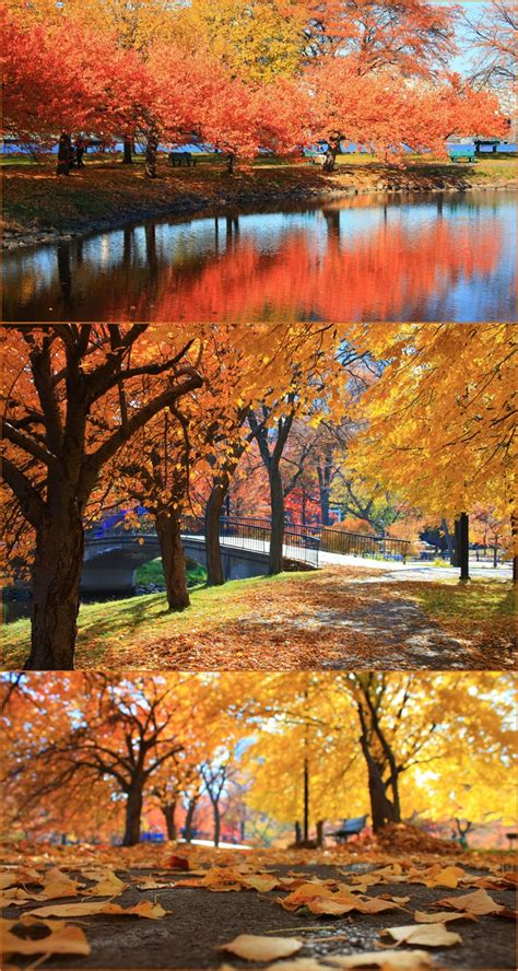happy garden fall river ma 17 best images about boston s seasons on