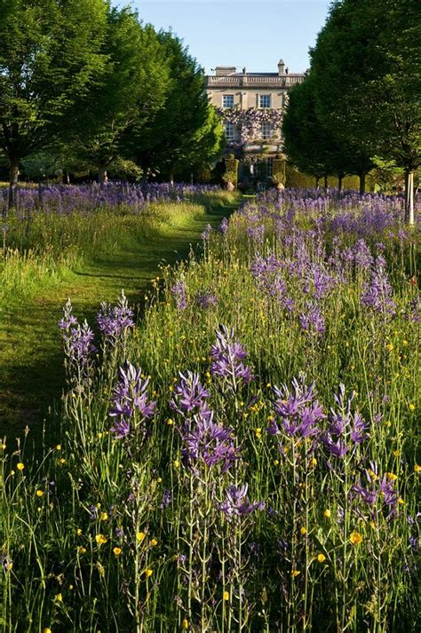 tuin prins charles at home with prince charles a garden ramble english