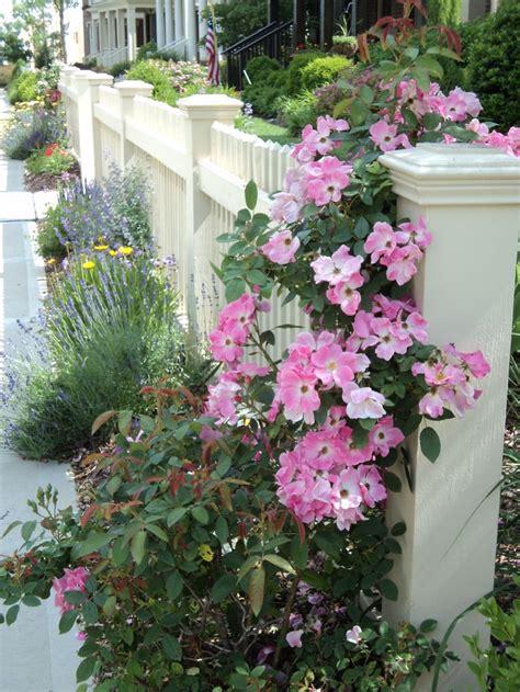 Pretty Garden Trellis 292 Best Images About Garden Fences Trellis On