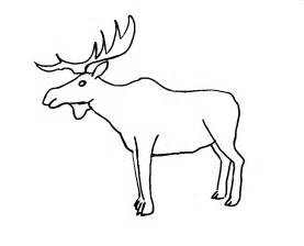 coloring book pages moose moose coloring coloring pages