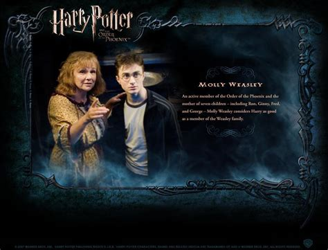 biography of harry potter hp bio harry potter movies photo 1759586 fanpop