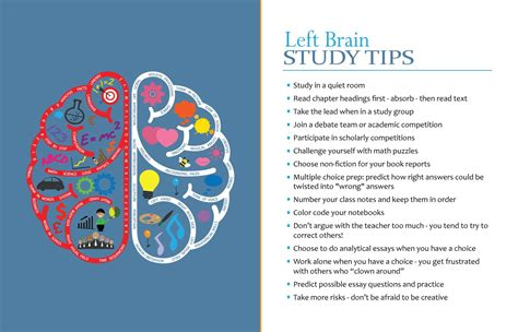 dominant design learning effect characteristics of left brain dominant students