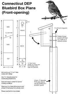 peterson bluebird house plans peterson bluebird nesting box peterson free engine image for user manual