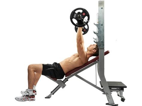 incline bench muscles image gallery incline bench press