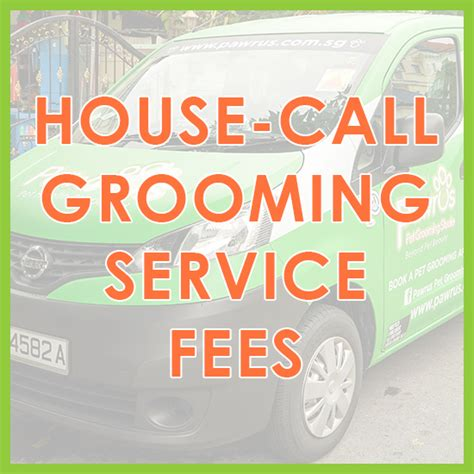 house call dog grooming low stress mobile pet grooming dog grooming cat grooming pawrus pet grooming studio skc