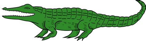 crocodile clipart clipart crocodile 4