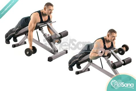 curl incline prone incline dumbbell curl
