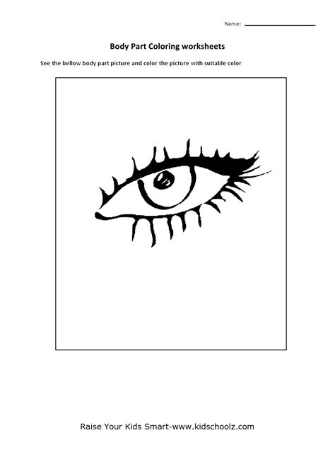 preschool eye coloring page body parts worksheet for preschool the best and most