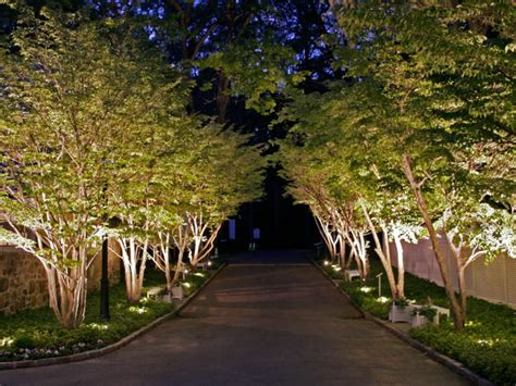 Residential Landscape Lighting Design 58 Landscape Designs Ideas Design Trends Premium Psd Vector Downloads