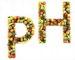 alimentazione alcalina dieta alimentazione acidificante o alimentazione