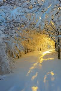25 best ideas about snow on winter winter