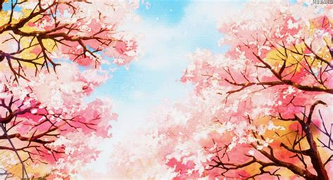 wallpaper gif bunga flowers trees gif find share on giphy