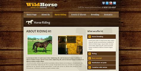 musical themes cannot represent real wild horse html5 bootstrap template gridgum