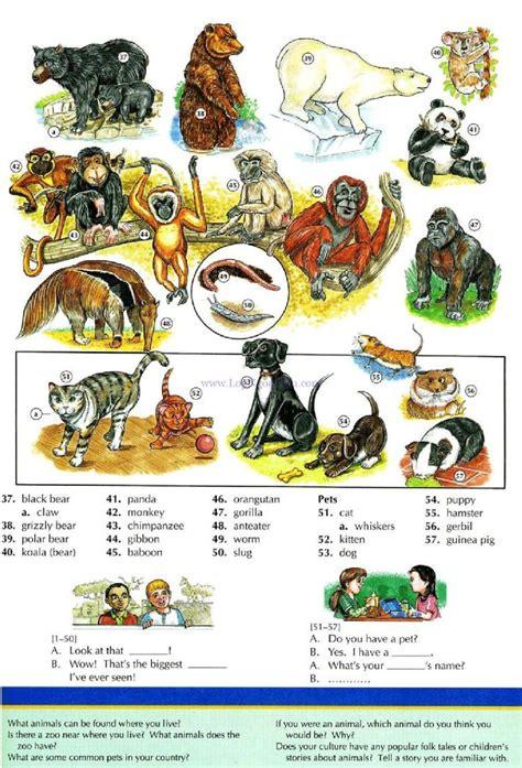 imagenes definition english 281 mejores im 225 genes de vocabulary worksheets en pinterest
